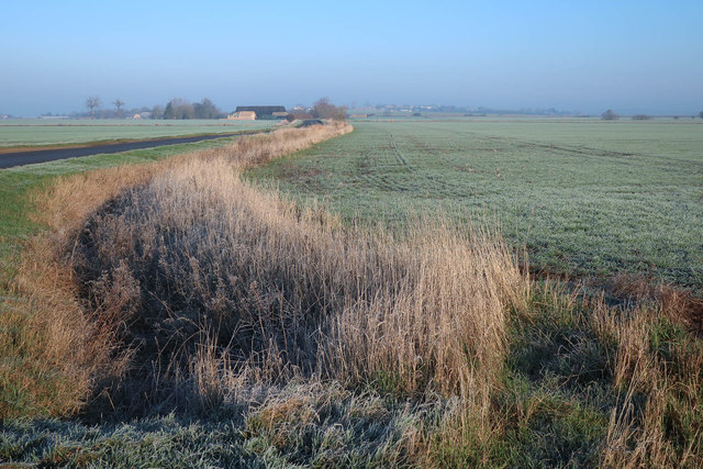 Frosty ditch by Long Causeway