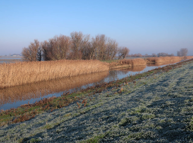 New Bedford River, Ouse Washes