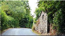 S9160 : Rural County Wexford by N Chadwick