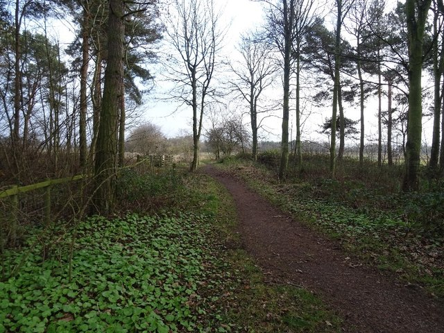 Path, Winton