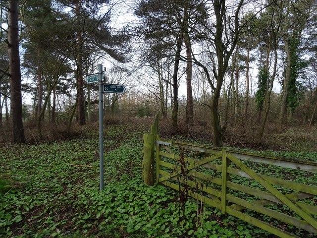 Path signpost, Winton