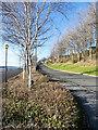 NZ2263 : Access road for car park beside River Tyne by Trevor Littlewood