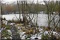 SJ4688 : Frozen pond near Ox Lane by Bill Boaden
