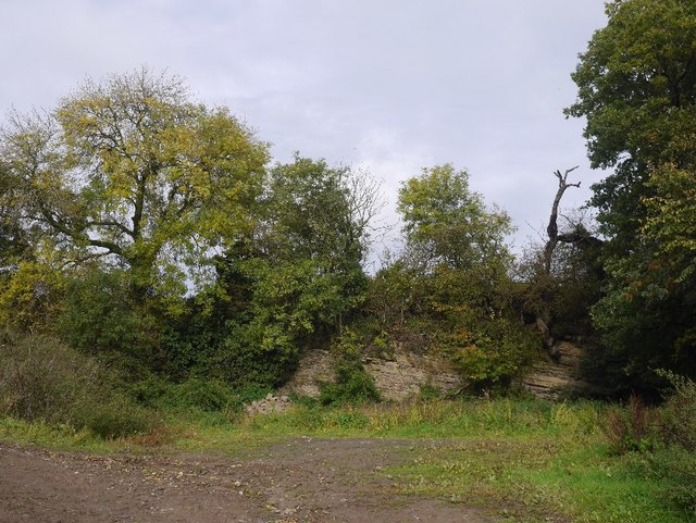 Limestone quarry near Titley
