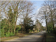 TQ2255 : The Avenue, Tadworth by Malc McDonald