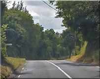 S7656 : Flander's Crossroads by N Chadwick