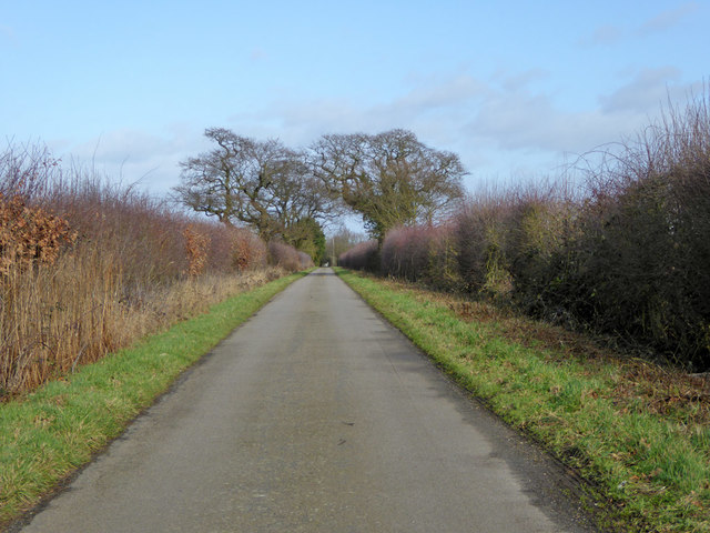 Slough Lane