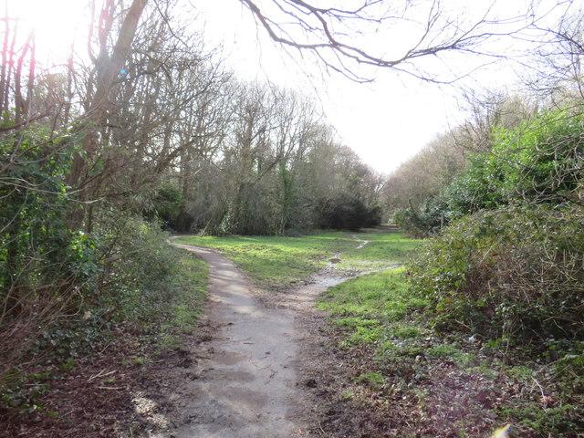Public bridleways, Tadworth
