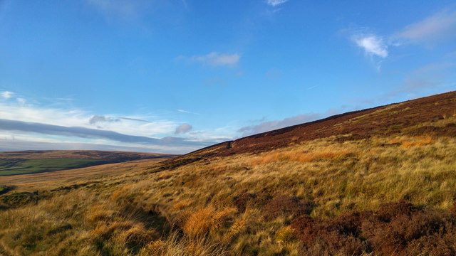 Moorland at Shackleton Knoll, above Walshaw