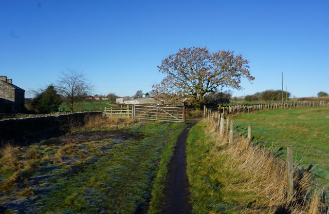 Kirklees  Way near Springfield Farm