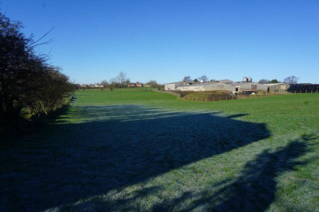 Kirklees Way towards Birkenshaw