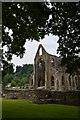 SO5300 : Looking towards the East Transept, Tintern Abbey by Colin Cheesman