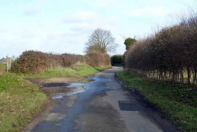 Hungerdown Lane by Robin Webster