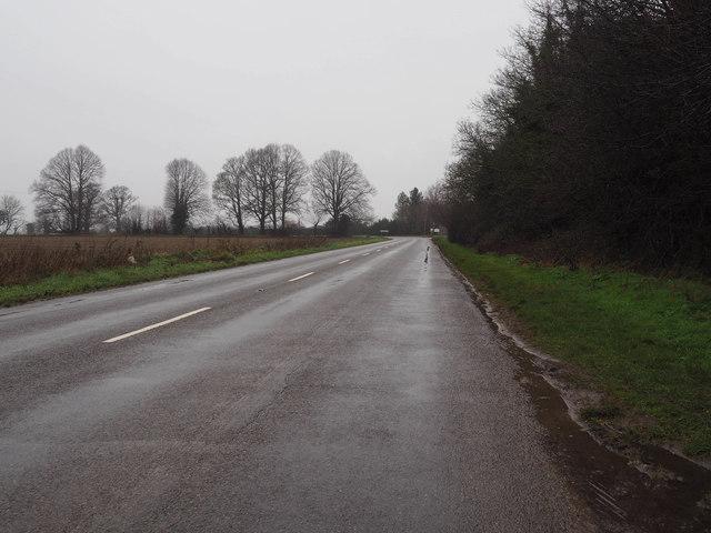 Looking along B1108 towards Little Cressingham