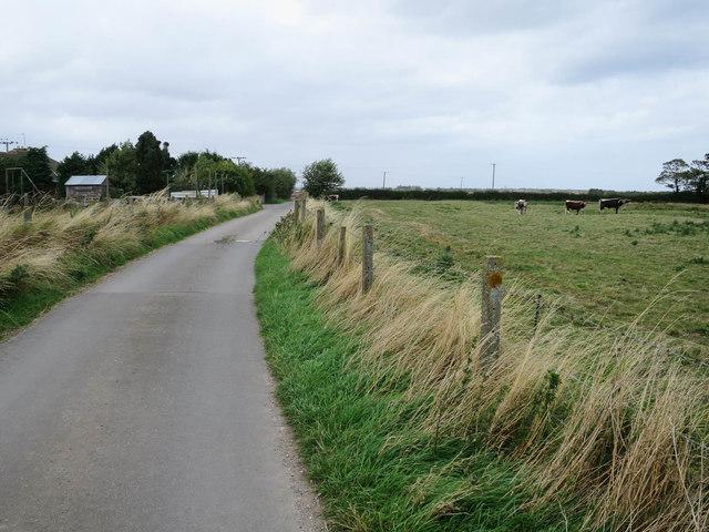 Bridleway from West Farm