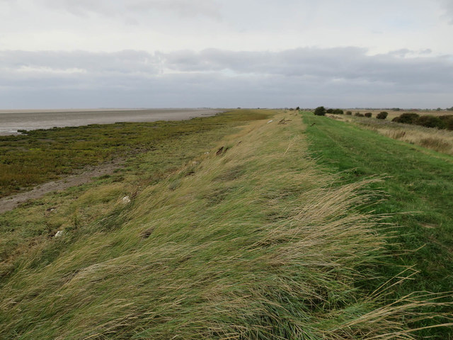 North bank of the Humber