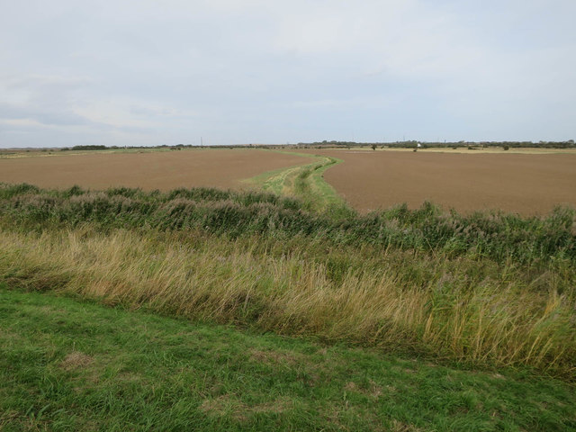 Ditch by the Humber bank