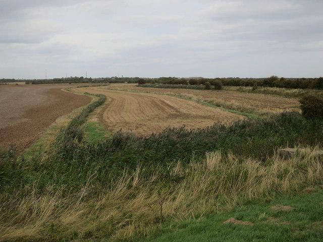 Fields by Humber Side Lane