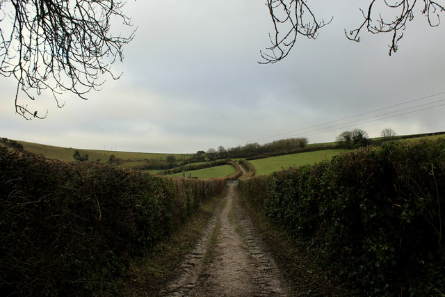 Wessex Ridgeway climbing Eastwards from Sydling St. Nicholas