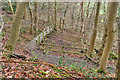 NZ5712 : Permissive Footpath, Newton Wood by Mick Garratt