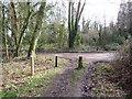TQ2352 : Public bridleway at Mogador, near Reigate by Malc McDonald