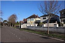 SZ1394 : Houses on River Way (2) by Nigel Mykura