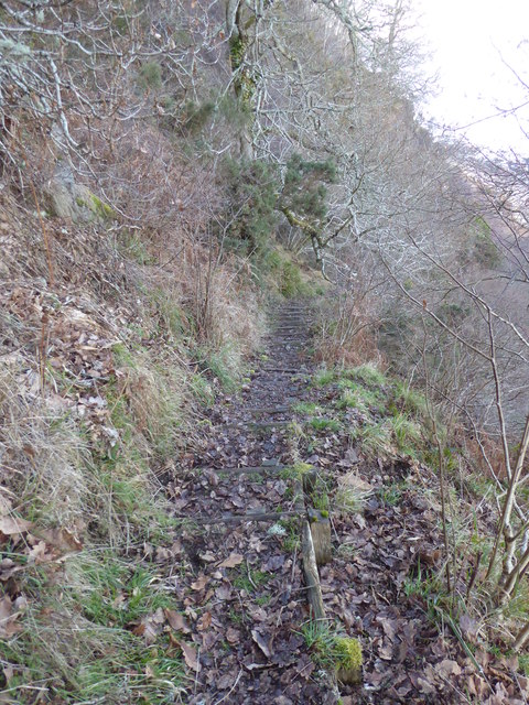 Footpath to the shore below Brown Hill