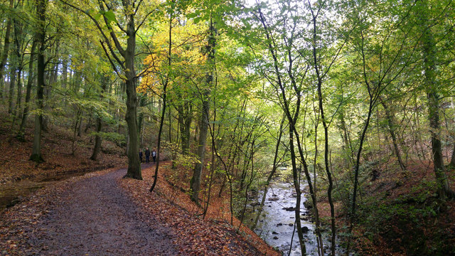 Path and mill race above Eller Beck, Skipton Castle Woods