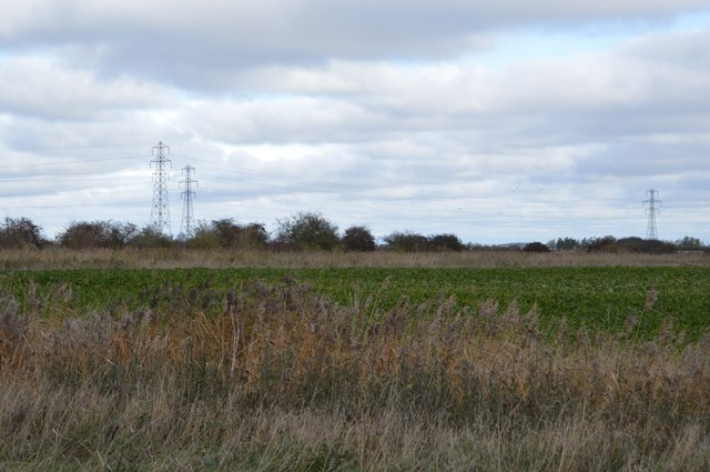 Fenland by Whiteway Drove