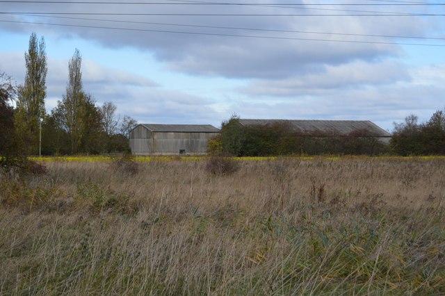 Sunnywood Farm
