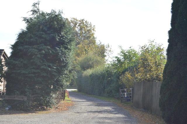 Track, Buckman Green Farm
