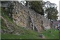 TQ5846 : Curtain Wall, Tonbridge Castle by N Chadwick
