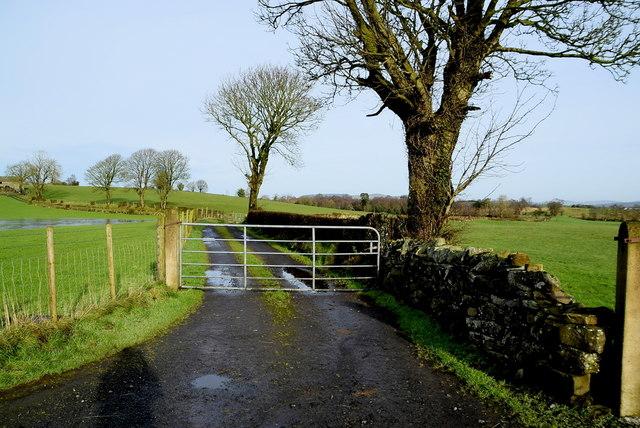 Gate and lane, Carony