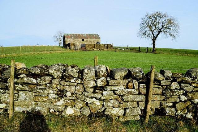 Dry stone wall with barn behind, Carony