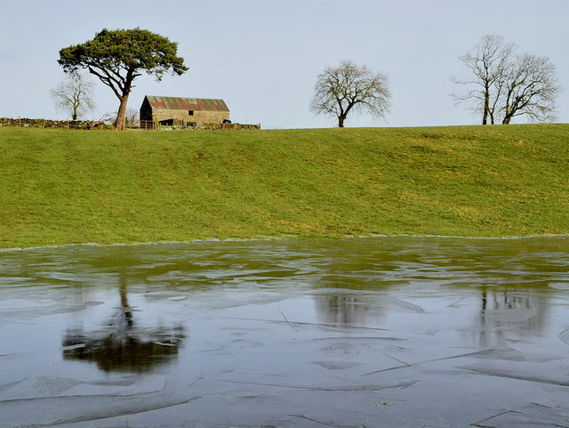 Icy pond and tree reflection, Carony