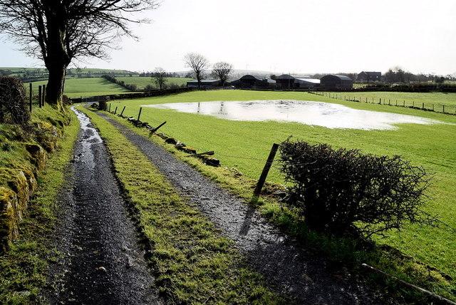 Lane and pond, Carony