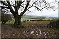 SY6199 : Quagmire on the Wessex Ridgeway path, Break Heart Hill by Tim Heaton