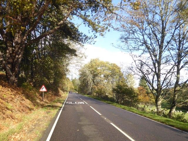 A82 north of Lochend by Alpin Stewart