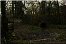 ST6601 : Small Bridge over the River Cerne by Chris Heaton