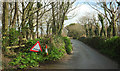 SW8775 : Lane at Harlyn by Derek Harper