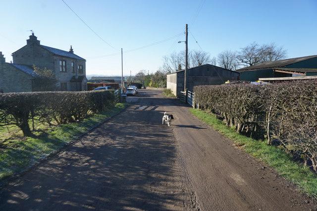 Lower Lane off Hunsworth Lane