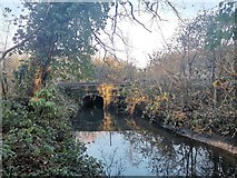 TQ1070 : Longford River Running Under Railway Line by James Emmans