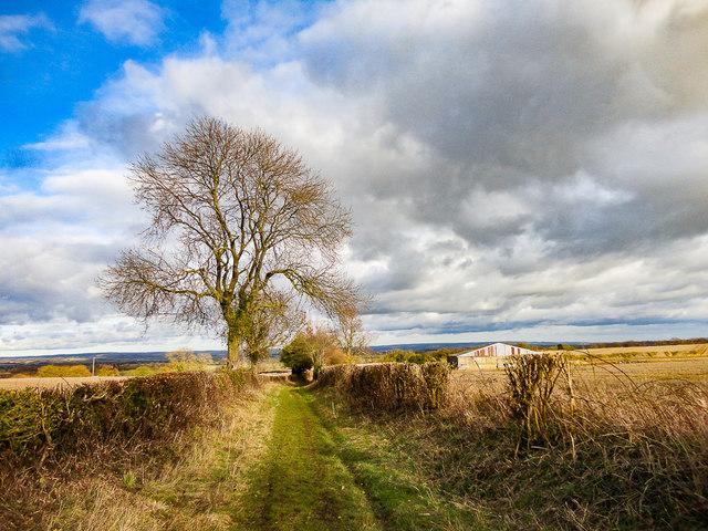Caulkleys Lane, near West Ness