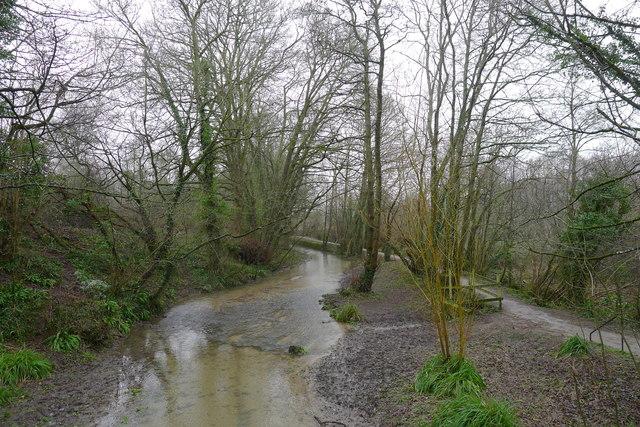 The River Cerne entering Cerne Abbas