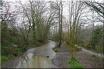 ST6601 : The River Cerne entering Cerne Abbas by Tim Heaton