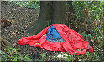 SX9065 : Evidence of sleeping out, Chapel Hill Pleasure Grounds by Derek Harper