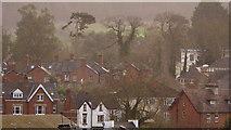SO6024 : Ross-on-Wye rooftops by Jonathan Billinger