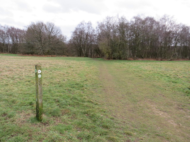 Bridleway marker on Banstead Heath