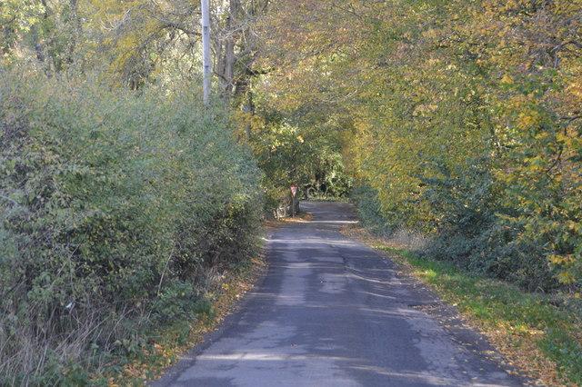Autumn, Romden Rd