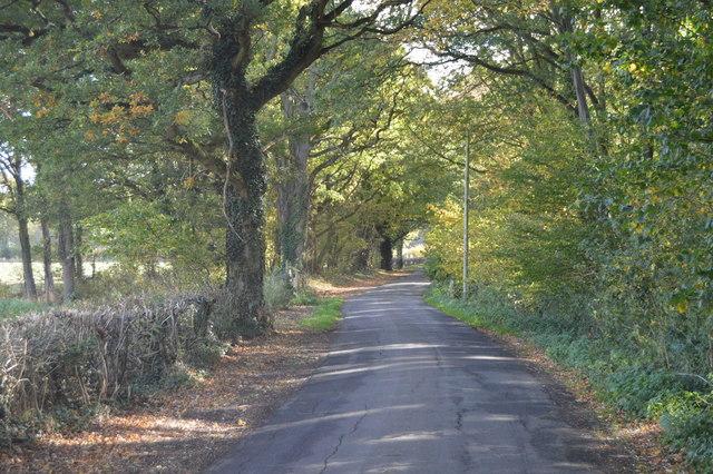 Wissenden Lane